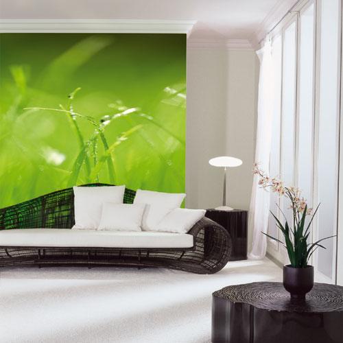 Fotowand Green