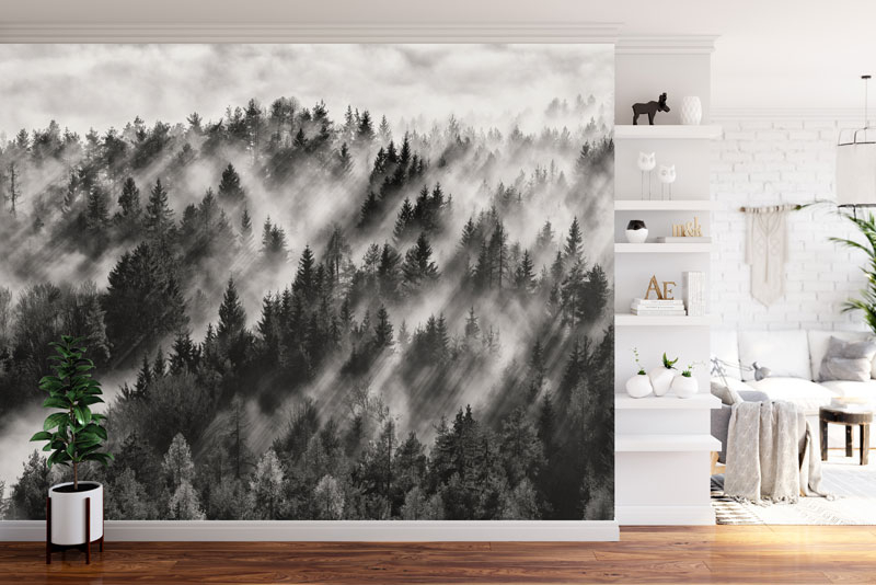 Vlies fotobehang Misty forest