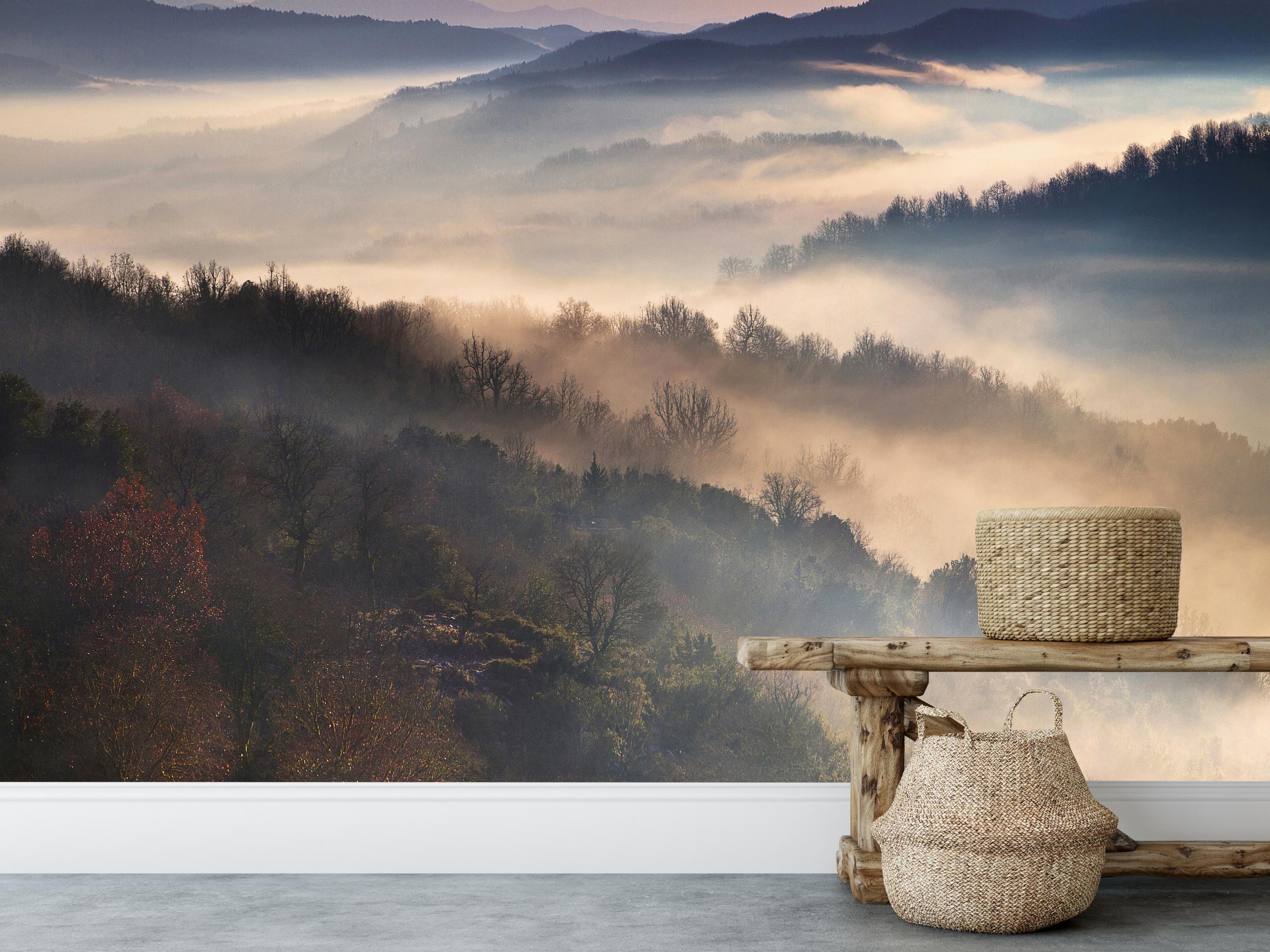 Vlies fotobehang Landschap in de mist