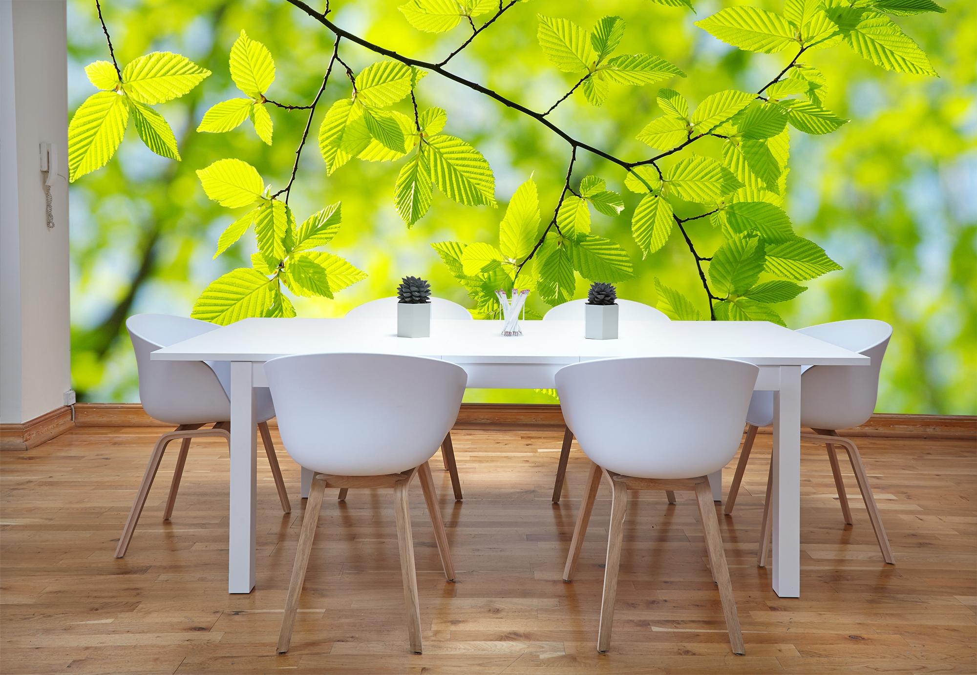 Vlies fotobehang Lente groen