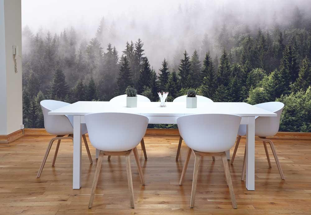 Vlies fotobehang Bos in de mist