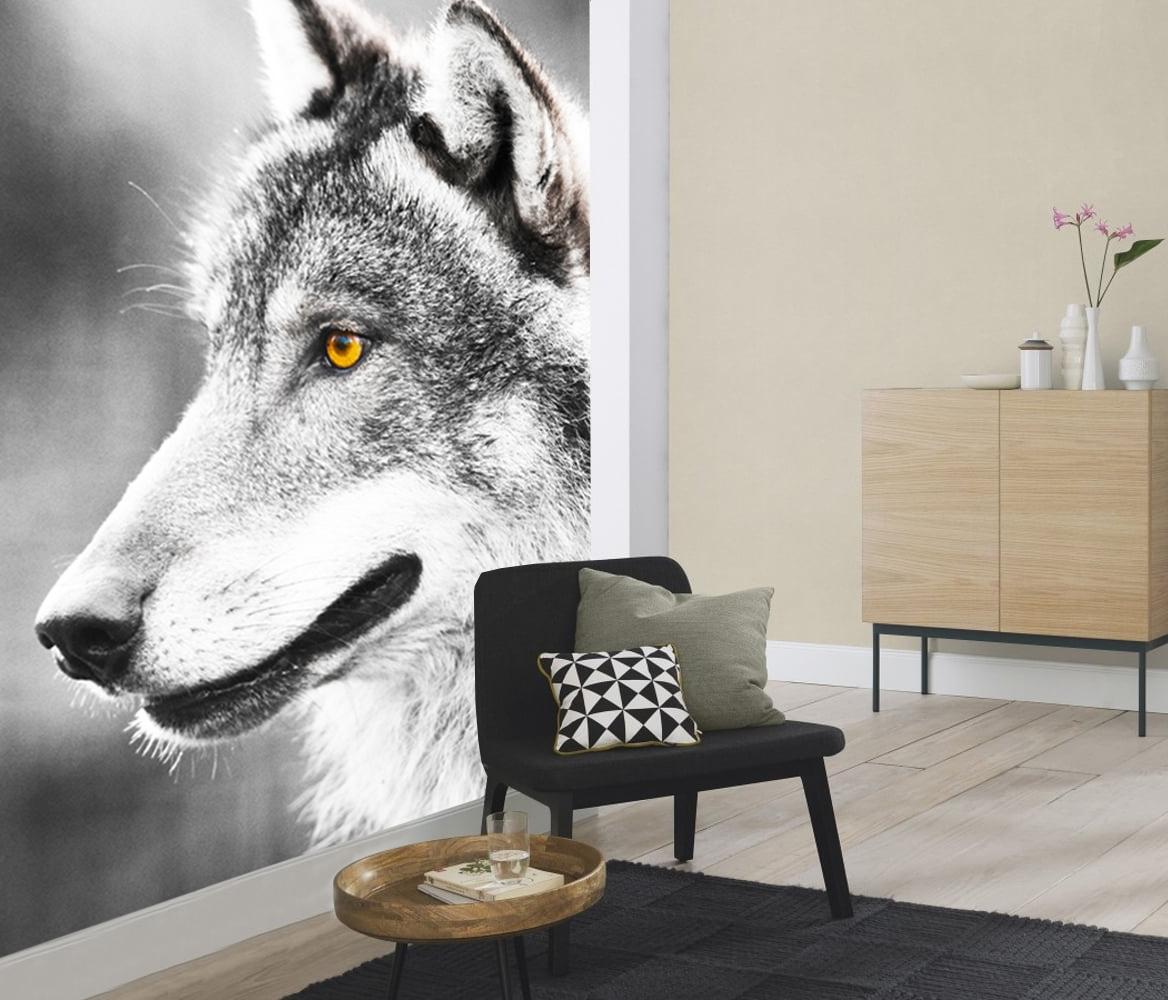 Vlies fotobehang Wolf