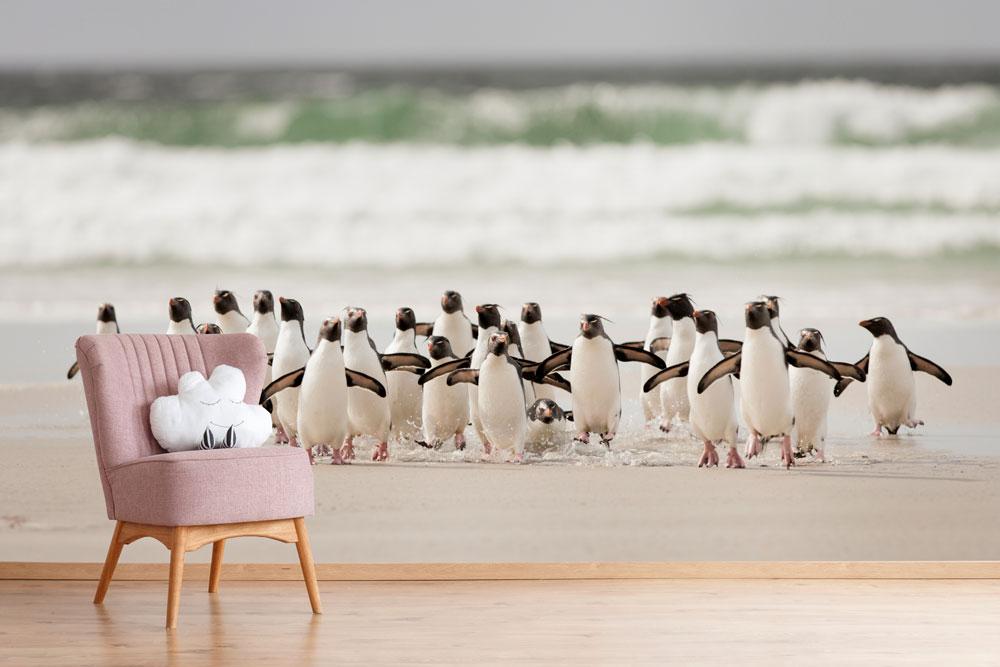 Vlies fotobehang Pingu�ns