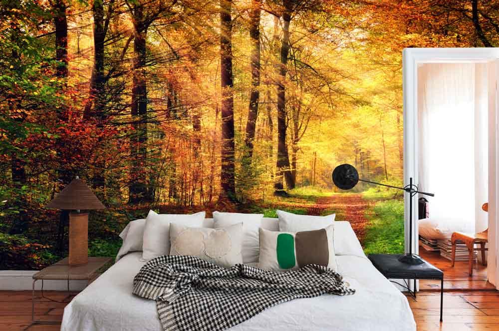 Vlies fotobehang Bos in herfstkleuren