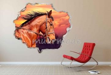3D Muursticker Paard