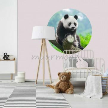 Behangcirkel Panda