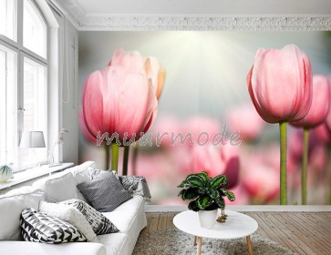 Vlies fotobehang Zonnestralen op tulpenveld