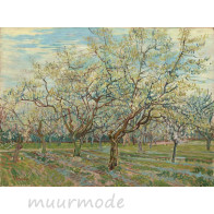 Canvas witte boomgaard_90x60