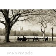 Vliesbehang Herinneringen aan Central Park