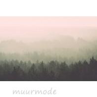 Vlies fotobehang Uitzicht op mistig bos Vintage