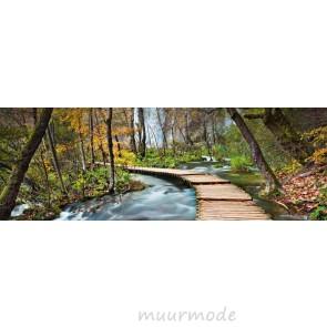 Fotobehang Pad in het bos