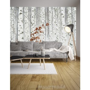 Fotobehang White Birch Forest