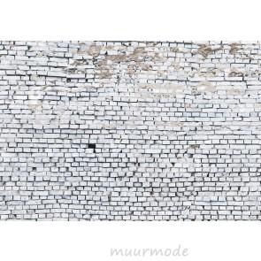 Fotobehang White brick