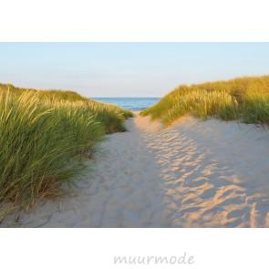 Fotobehang Sandy path