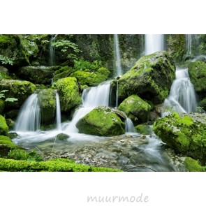 Tuinposter Waterval in het bos