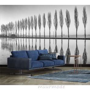 Vlies fotobehang Bomen bij meer