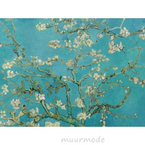 Canvas schilderij Amandelbloesem