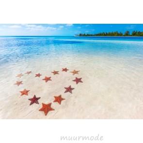 Vlies fotobehang Hart van zeesterren