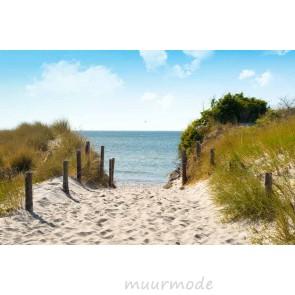 Vlies fotobehang Duinen Oostzee