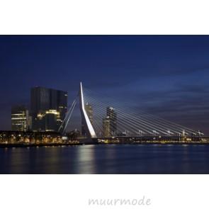 Vlies fotobehang Erasmusbrug Rotterdam