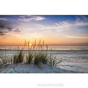 Vlies fotobehang Avond zee