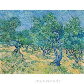 Canvas schilderij Olijfgaard
