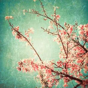 Vlies fotobehang Cherry blossom vintage