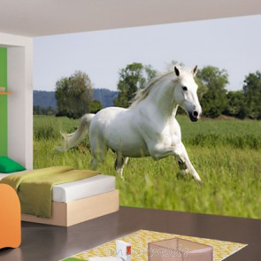 fotobehang wit rennend paard