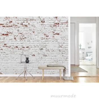 Vlies fotobehang Witte bakstenen muur