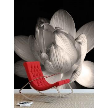 Fotobehang met zwart-wit bloem
