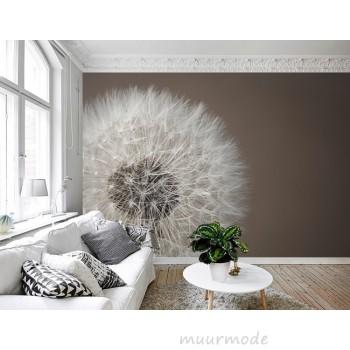 Fotobehang: goedkoop foto behang koop je online bij Muurmode