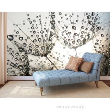 Fotobehang regendruppels aan bloemen