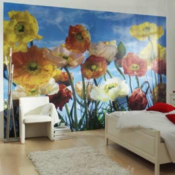 Fotowand Poppy