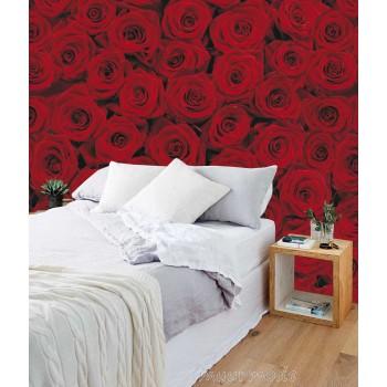 Fotomuur Roses
