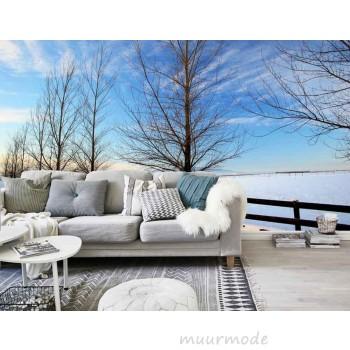Blauwe lucht en witte sneeuw