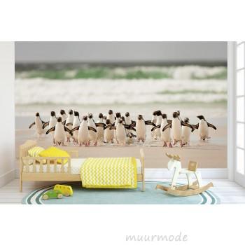 Fotobehang Penguins Walking
