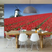 Vlies fotobehang Holland in bloei