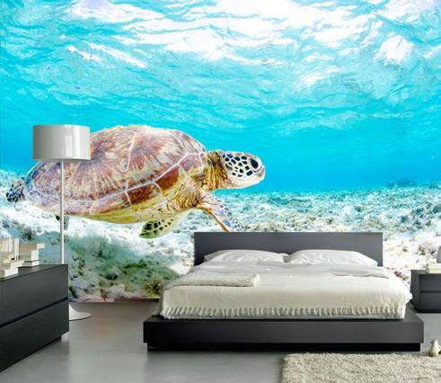Vlies fotobehang Schildpad onder water