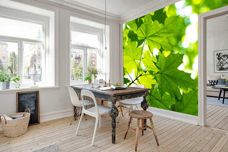 Vlies fotobehang Groene bladeren in de zon