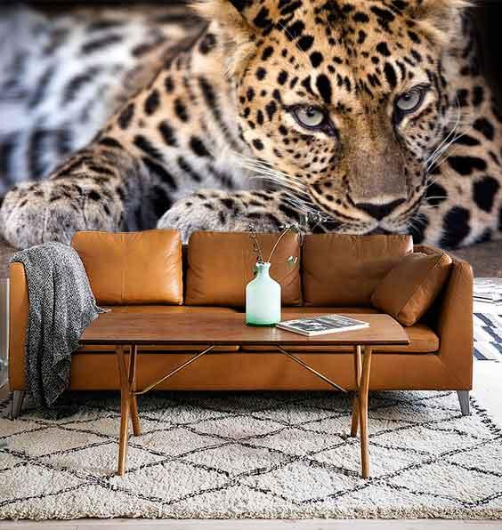 Vlies fotobehang Luipaard